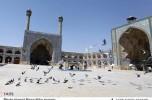 عضو هیئت امنای مسجد جامع درب بهشت: از مسئولان جیرفت تقاضا دارم موانع برگزاری نماز جمعه درب بهشت را پیگیری و حل کنند