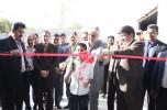 راه اندازی خط تولید بسته بندی ذرت علوفه ای برای اولین بار در جنوب کرمان/تصاویر