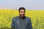 پیام تبریک نوروزی فرماندار عنبرآباد