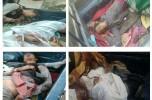 شرور مسلح مختار جهش معروف به بختیار رئیسی از اشرار منطقه جنوب استان کرمان به هلاکت رسید+تصاویر و جزئیات