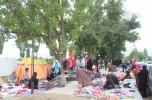 بخش ساردوئیه در تعطیلات عید فطر امسال، میزبان حدود هفتاد هزار نفر گردشگر بود/ تصاویر