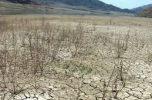 معصومه ابتکار: تالاب جازموریان, از ۵۰ سال پیش به دلیل تشکیل سازمان کشت و صنعت جیرفت در معرض خشکی قرار گرفت