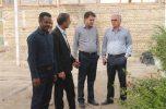 کاشت و تولید گیاهان فصلی در راستای ایجاد منابع درآمدی جدید در دانشگاه آزاد اسلامی واحد جیرفت آغاز شد