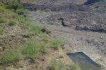مسایل و مشکلات سیستم های آبیاری نوین، قطره ای و بارانی