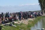 اولین مسابقه ماهیگیری خانوادگی در جیرفت برگزار شد/ تصاویر