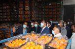 ذخیره ۳۸۰۰ تن انواع اقلام اساسی مورد نیاز مردم برای شب عید