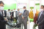 حضور استاندار کرمان در غرفه کشت و صنعت جیرفت در نمایشگاه بین المللی اوراسیا